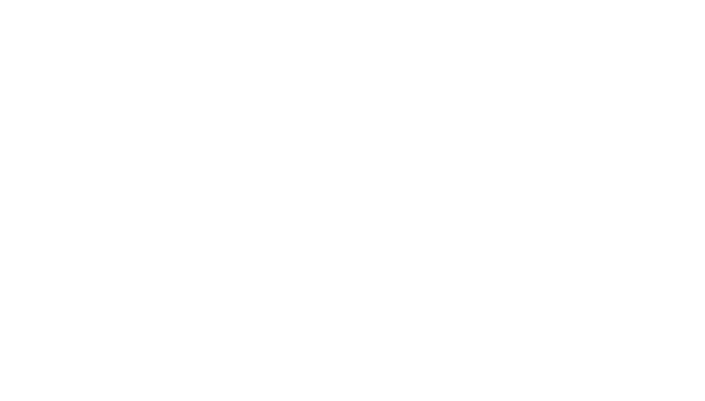 Free Website & Data Migration